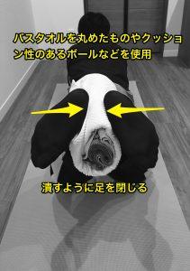 股関節外旋筋群筋トレ
