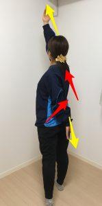 腹斜筋群・肋間筋筋膜リリース