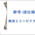 足首の骨折「腓骨骨折」の原因・症状・リハビリ治療
