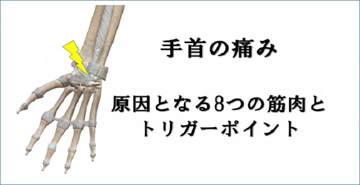 手首の痛みの原因となる8つの筋肉とトリガーポイント