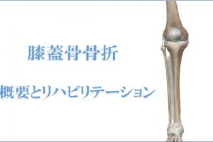 膝蓋骨骨折の概要とリハビリテーション