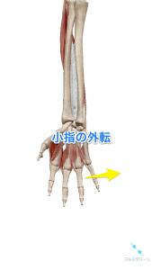 小指の外転